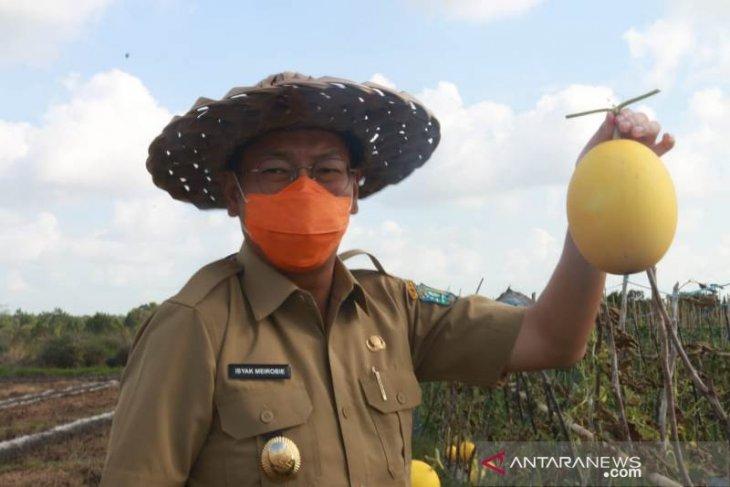 Pemkab Belitung padukan potensi pertanian desa dan pariwisata