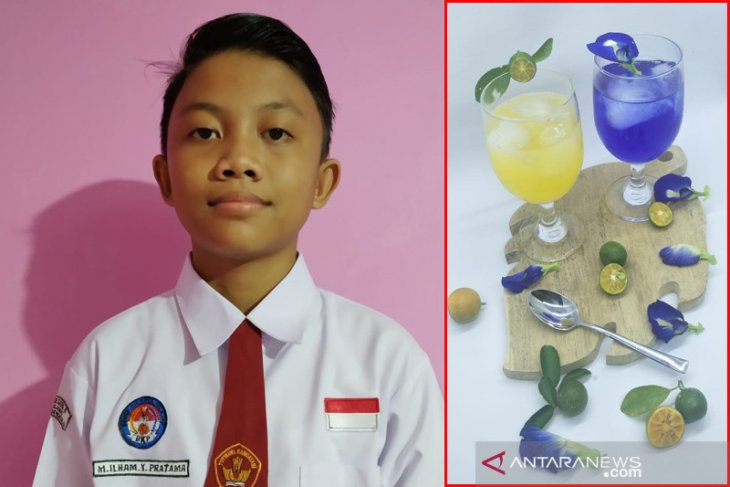 Bunga telang antarkan siswa SDN 08 Bengkulu menang Kihajar STEM