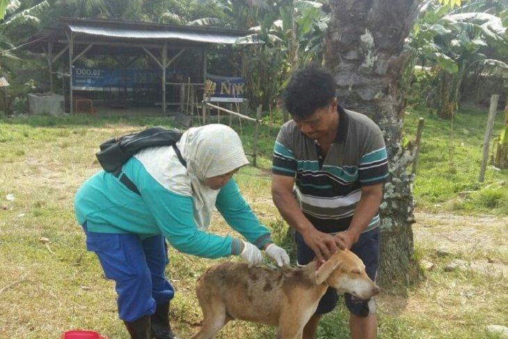 Di Mukomuko 61 warga digigit hewan penular rabies