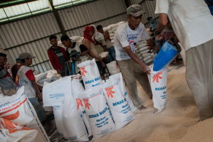 Bulog Lebak-Pandeglang targetkan distribusi BSB dari Kemensos rampung akhir Oktober