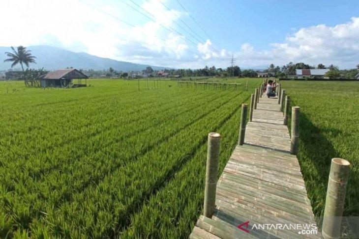 Karang Taruna Rimbo Recap Rejang Lebong bangun lokasi wisata spot foto