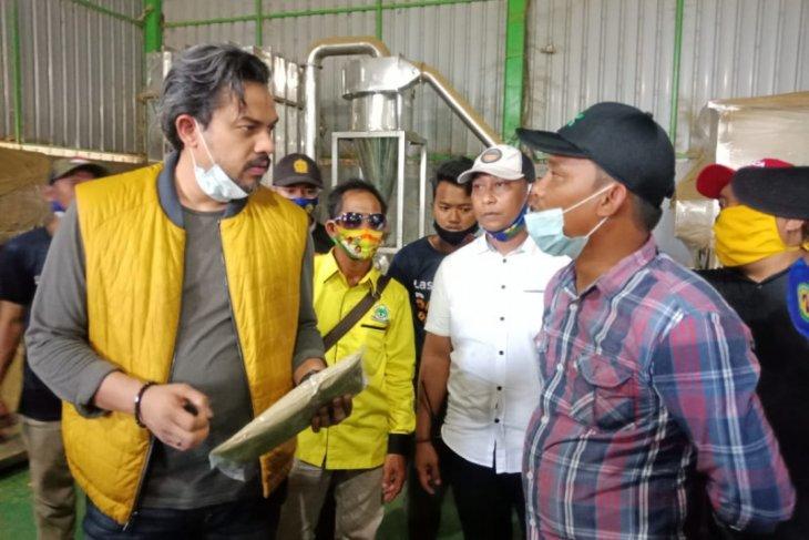 Komisi VII DPR tegaskan tanaman Kratom tidak dilarang petani jangan cemas