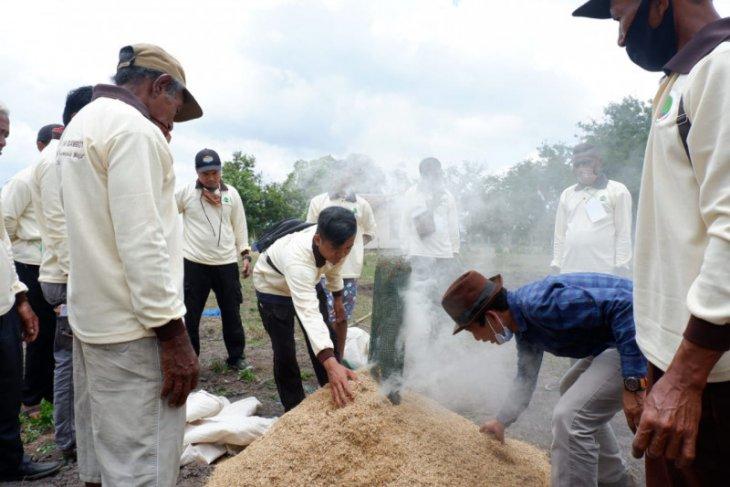 BRG develops 14 food resilience-based villages in peatland areas