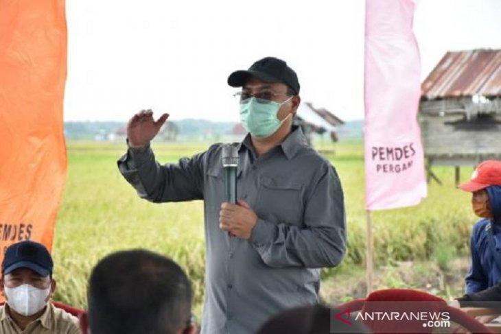 Bangka Belitung jadikan sentra padi Bangka Selatan sebagai