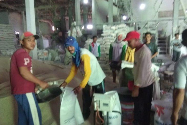 Harapan Banten selatan, seluruh gabah hasil panen ditampung Perum Bulog