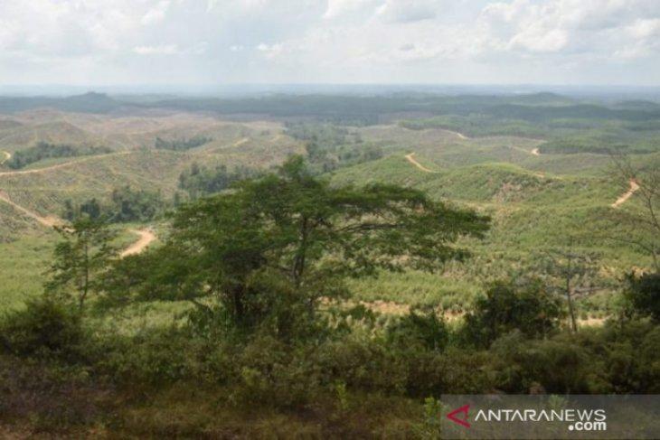 DPRD Penajam: Perencanaan induk pembangunan IKN terus berlanjut