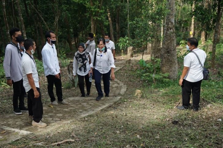 DLH Tabalong kunjungi Kebun Raya Balangan