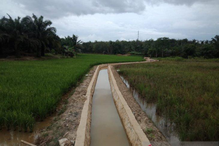 Bumi Asih bangun 2,7 km irigasi, dongkrak produksi padi sawah