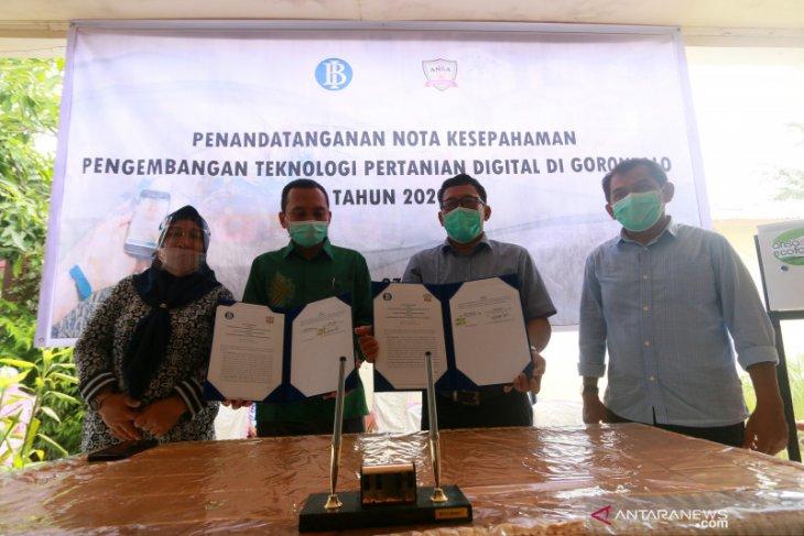 Kantor BI Gorontalo tandatangani MoU pengembangan teknologi pertanian digital