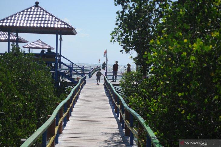 Libur maulid di wisata hutan mangrove Pamekasan