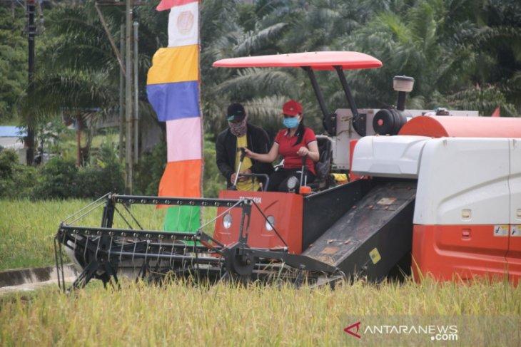 Petani Kabupaten Landak rasakan manfaat penggunaan Alsintan modern