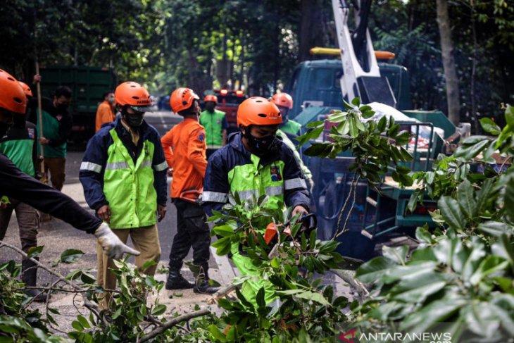 Bima Arya ingatkan warga Kota Bogor waspadai bencana hidrometeorologi