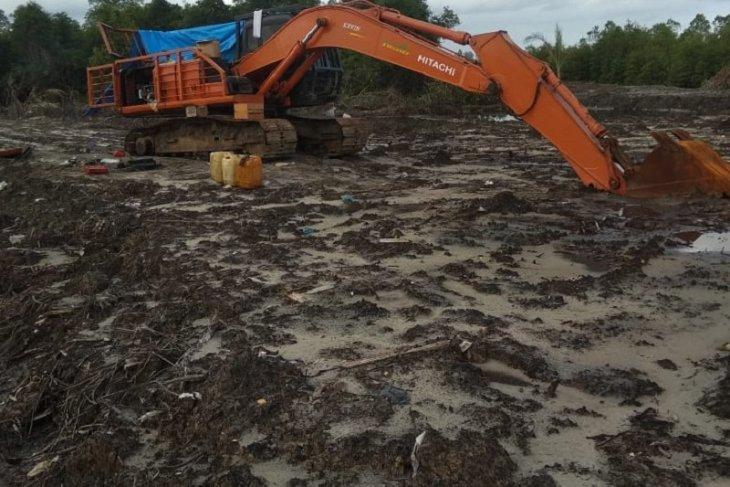 Hutan mangrove di Gunungsitoli Utara  dirusak