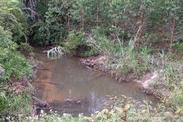 Pemkab Taput desak TPL lakukan tiga hal soal dugaan pencemaran air di Sipahutar