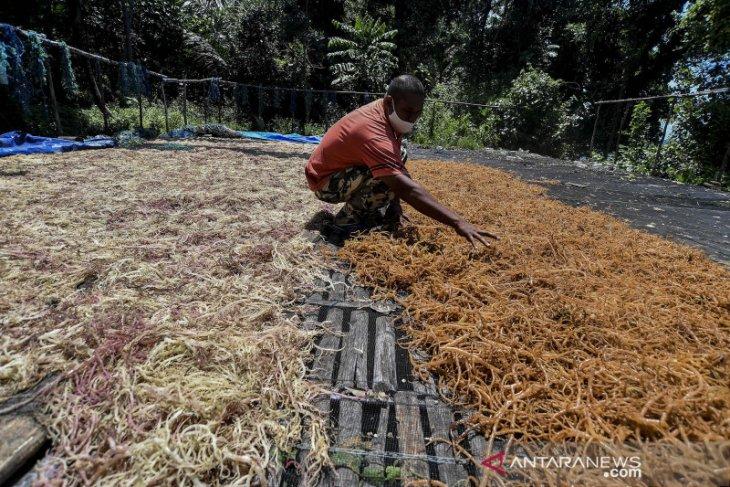 BPS  Provinsi Maluku Januari 2021 naik 090 persen