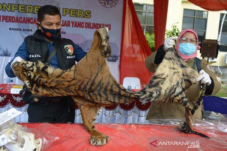Tim gabungan Polda Aceh menggagalkan perdagangan satwa Rp6,3 miliar