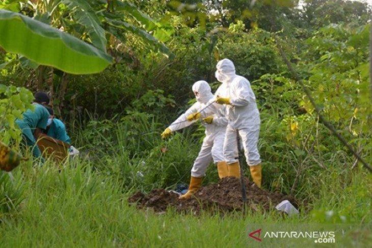 Per hari ini, sembilan warga Aceh meninggal dunia karena COVID-19