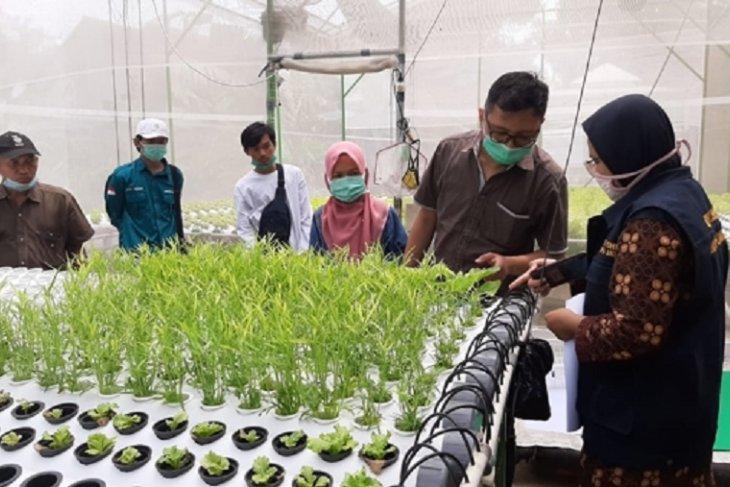 Pemkab Kediri fasilitasi para petani hidroponik raih sertifikasi prima