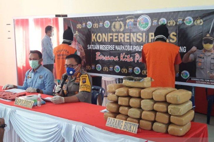 Polesta Deli Serdang gagalkan peredaran 26 kilo ganja asal Aceh