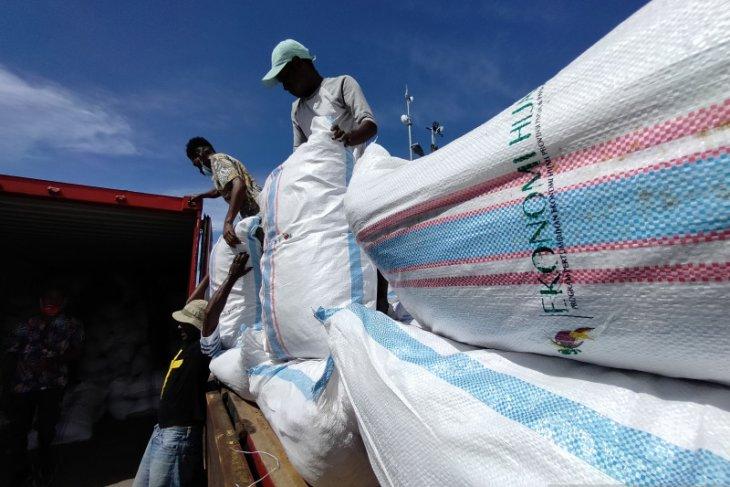 Pengiriman biji kakao Manokwari Selatan mulai rutin