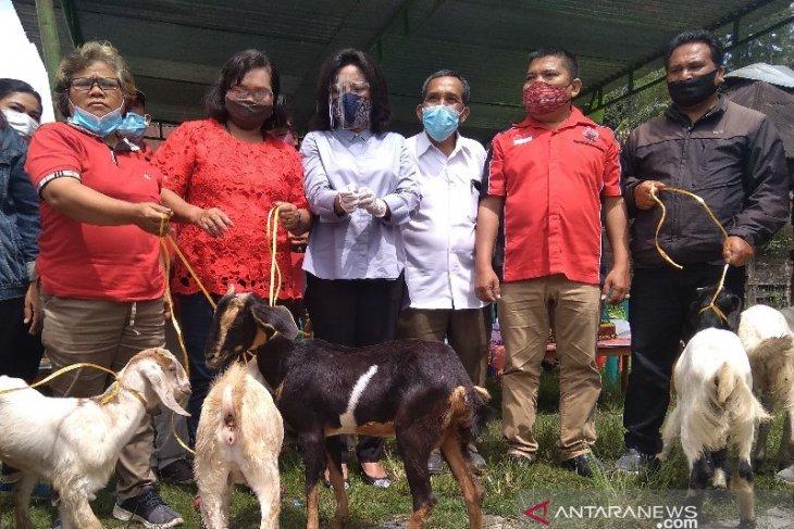 Kemarin, Satika serahkan bantuan 60 ekor kambing dan 600 ekor itik untuk poktan
