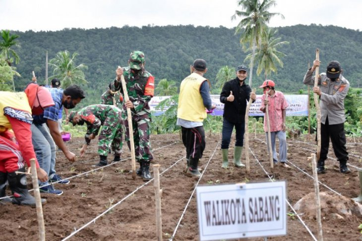 Sabang tanam perdana komoditas padi Gogo