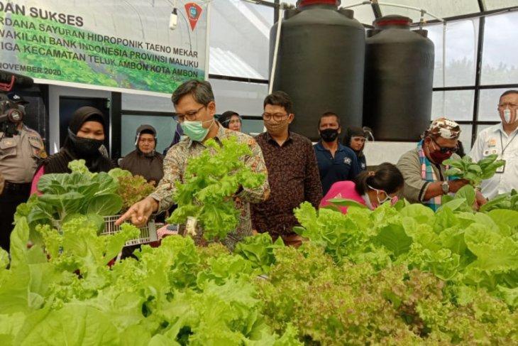 BI Maluku dukung produktivitas hasil pertanian petani di Ambon
