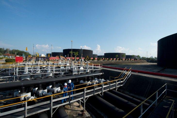 SKK Migas Blok Rokan masih andalan menuju produksi 1 juta barel