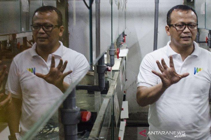 KPK sita rekening pedangdut Betty Elista kasus Edhy Prabowo