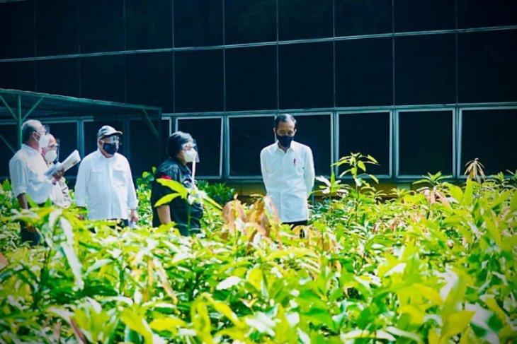 Jokowi  inspects seedling center for environmental disaster prevention