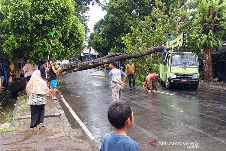 BPBD Pulau Morotai 52 rumah dan fasilitas umum rusak akibat cuaca ekstrem
