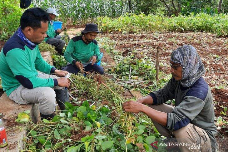 Disbun Kaltim jalin kerjasama pengelola hotel pasarkan produk perkebunan
