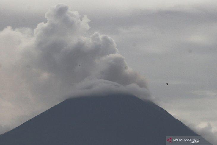 Gunung Semeru masih luncurkan awan panas guguran, warga diminta waspada