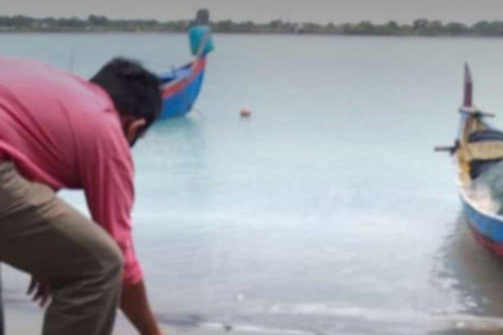 Nelayan Aceh Utara keluhkan air laut tercemar limbah