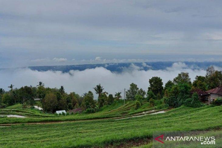 Mimpi Desa Panji Anom-Buleleng jadi destinasi wisata alam