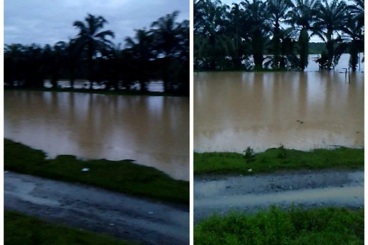 Sungai Wampu Langkat meluap