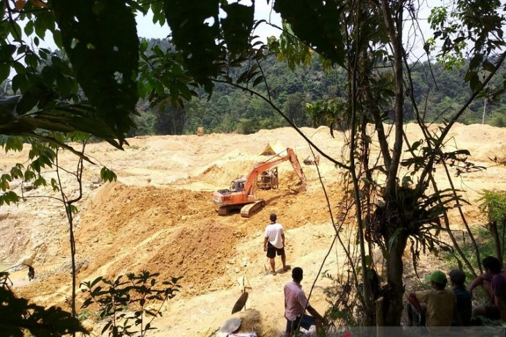 Hutan Desa Lubuk Bedorong  Sarolangun dijarah pelaku penambang emas ilegal