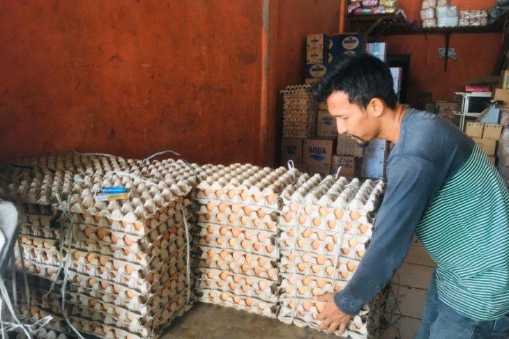 Harga telur ayam naik di Pasar Lambaro