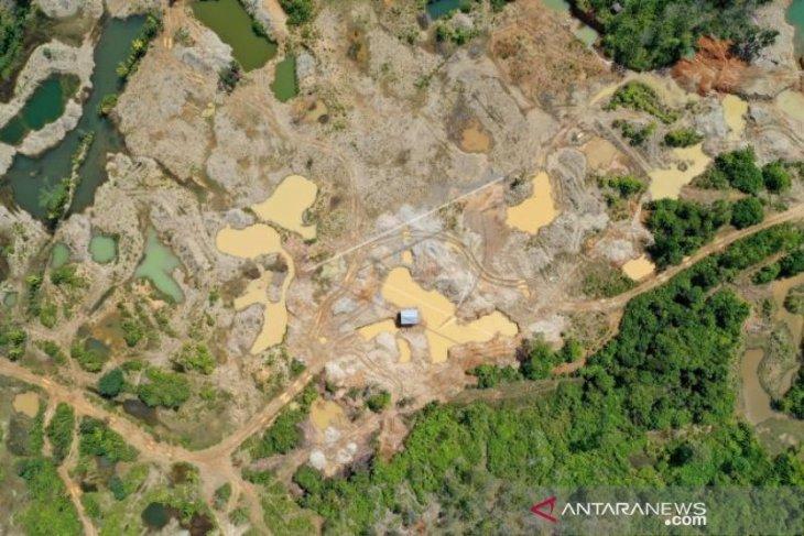 5.000 Ha hutan lindung Nagan Raya rusak akibat tambang ilegal
