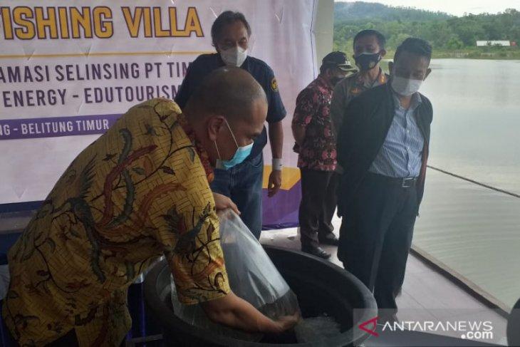 PT Timah harapkan Kampong Reklamasi Selinsing jadi destinasi wisata baru
