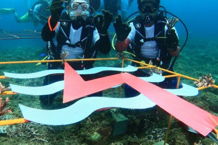 PLN UIP Maluku peduli ekosistem laut