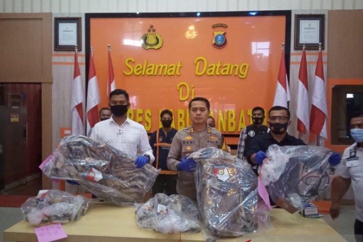 Polres Labuhanbatu gagalkan perdagangan Harimau Sumatera