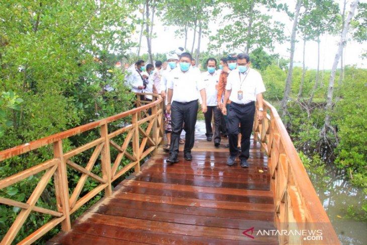 Ekowisata hutan mangrove Jembrana dibuka