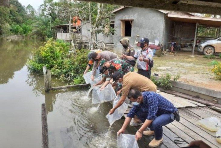 PT CITA bantu pelepasan 1.000 ikan lokal di Kabupaten Ketapang
