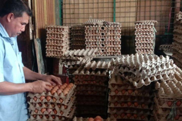 Harga telur ayam di Lambaro tembus Rp52 ribu per papan