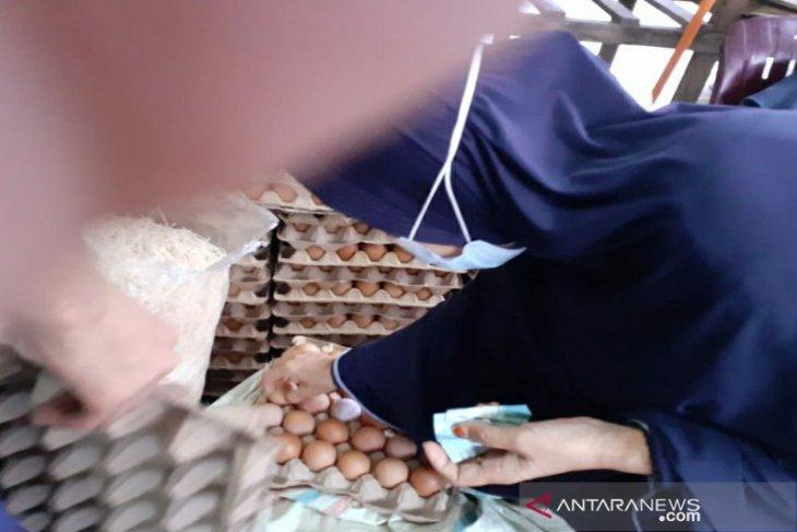 Harga telur dan daging  ayam ras di Medan bergerak naik jelang Natal