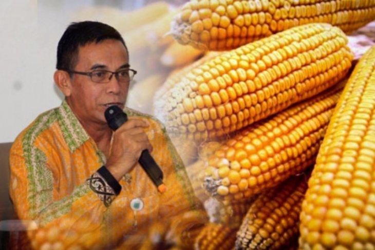 Gapoktan Paser panen 4.267 ton jagung