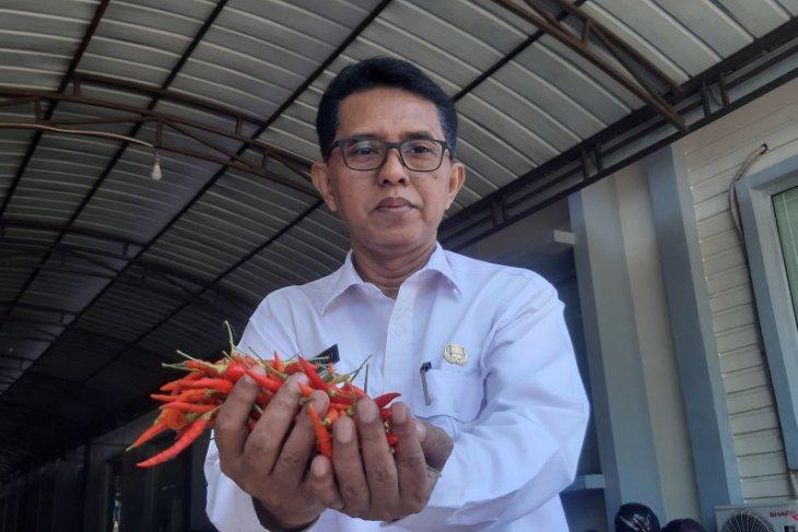 Pemrov Kalbar pastikan harga pangan strategis terkendali saat Natal 2020
