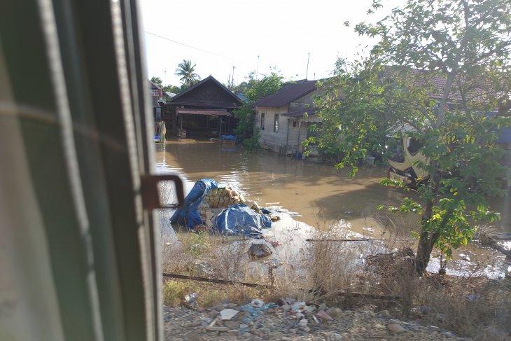 Rumah dan anakan padi di Kabupaten Banjar kalsel terendam