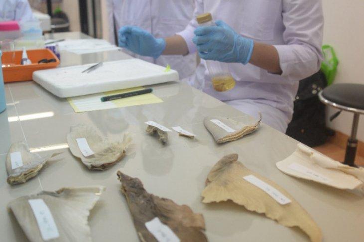 Lab bio-molekuler Polnep permudah identifikasi satwa air di Kalimantan Barat